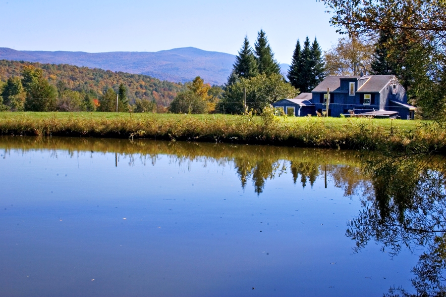 Firefly Bed and Breakfast, Bristol, Vermont